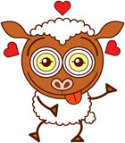 Cute sheep felling madly in love Stock Photos