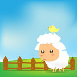 Cute Sheep 001 Royalty Free Stock Image