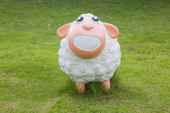 Cute sheep on green grass Stock Images