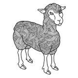 Cute sheep. Royalty Free Stock Photos