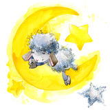 Cute sheep. watercolor illustration. Sheep T-shirt design. Sheep and Stars Background Stock Photos