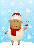 Cute sheep on winter background Stock Photo