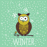 Cute shocked cartoon owl in winter. Royalty Free Stock Photography