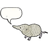 Cute shrew illustration Royalty Free Stock Image