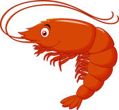 Cute shrimp cartoon Royalty Free Stock Image