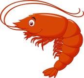 Cute shrimp cartoon Royalty Free Stock Image