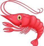 Cute shrimp cartoon illustration Stock Image
