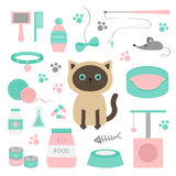 Cute siamese cat in flat design style. Suff set. Paw print, scrathing rope post, bed, shampoo, brush, collar, clew ball, food, pla Royalty Free Stock Image