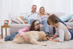 Cute siblings playing with dog with their parent on the sofa Royalty Free Stock Photo