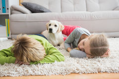 Cute silblings with their puppy on rug Royalty Free Stock Photo