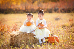 Cute sisters holding pumpkins. Sitting on straw bale Stock Images