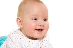 Cute six-month-old baby girl Royalty Free Stock Image