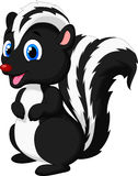 Cute skunk cartoon Stock Image