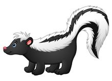Cute skunk cartoon. Illustration of Cute skunk cartoon Stock Photography