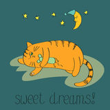 Cute sleeping cat. Sweet dreams vector background Royalty Free Stock Image