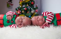 Cute sleeping christmas newborn brothers elf Stock Photos