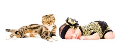 Cute sleeping newborn girl and cat royalty free stock photos