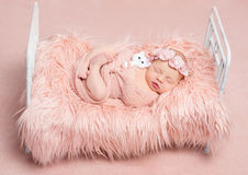 Cute sleeping newborn girl with toy cat on little bed Royalty Free Stock Photo