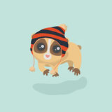 Cute slow loris Stock Photos
