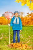Cute small boy with rake stands to clean grass Royalty Free Stock Photography