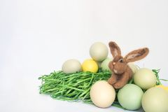 Cute Small Brown Rabbit in Easter Eggs and Green Grass on White. Wool felted brown bunny rabbit with Easter eggs and green grass on white background Stock Images