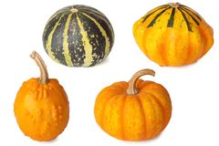 Cute small decorative pumpkins isolated on white background. Cute small decorative pumpkins isolated on a white background Royalty Free Stock Photo