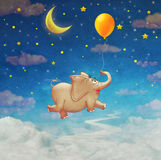 Cute small  elephant flying at colourful air balloon in the sky Stock Photos