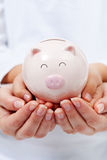 Cute small piggy bank in child hands Stock Images