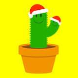 Cute small santa cactus in plant pot Stock Image