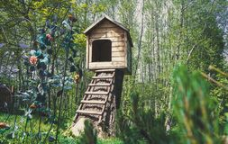 Cute small wooden dog`s House in a garden with stairs. With flowers stock image