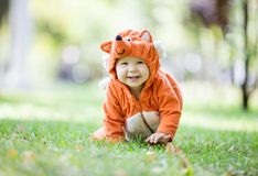 Cute baby girl dressed in fox costume crawling on lawn in park stock image