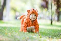 Happy baby girl dressed in fox costume crawling on lawn in park royalty free stock photography