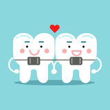 Cute smiling cartoon teeth characters with orthodontic bracket, dental vector Illustration for kids Stock Image