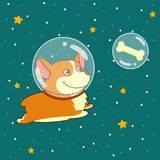 Cute smiling dog dressed in spacesuit is flying in outer space using, on starry space background. Royalty Free Stock Photography