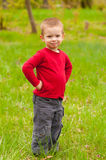 Cute smiling little boy standing on the meadow Stock Photo