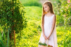 Cute smiling little girl holds basket  with fruit and vegetables. At the farm. Portrait of adorable small kid outdoor. Harvest Royalty Free Stock Photography