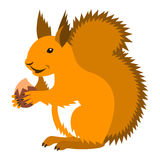 Cute smiling red squirrel with nut cartoon Stock Photo