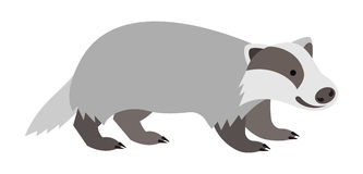 Cute smiling wild badger cartoon illustration Royalty Free Stock Photography