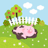 Cute smilling vector pig on a farm field Stock Photos