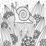 Cute snail adult coloring book page. Stock Photos