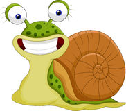 Cute snail cartoon Stock Photos
