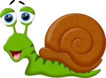 Cute snail cartoon Stock Image