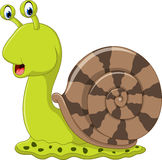 Cute snail cartoon Royalty Free Stock Image