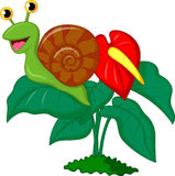 Cute snail cartoon on leaf Stock Images