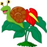 Cute snail cartoon on leaf. Illustration of Cute snail cartoon on leaf Stock Images