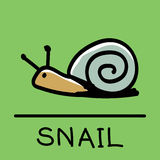 Cute Snail hand-drawn style, vector illustration. Cute Snail hand-drawn style,drawing,hand drawn vector illustration Royalty Free Stock Images