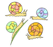 Cute snails Royalty Free Stock Photography