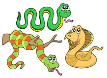 Cute snakes collection Stock Photography