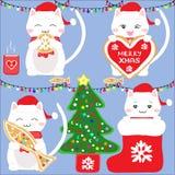 Cute Snow Cat Royalty Free Stock Photo
