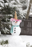 Cute Snowman Stock Photos